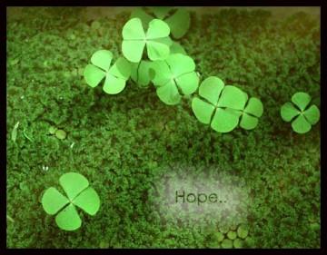 Hi vọng cuối
