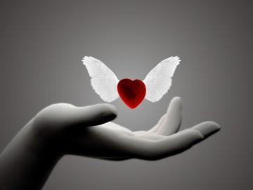 Nắm giữ một trái tim