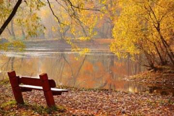 Góc nhỏ mùa thu
