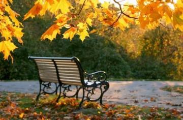 Gõ cửa mùa thu